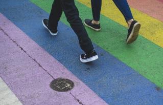Diversidad e inclusión: hacia la integración laboral de la comunidad LGBT