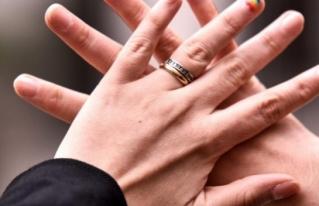 Hito: Senado aprueba la idea de legislar el matrimonio igualitario