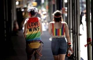 Iniciativas que impulsa la comunidad lésbico-gay en el congelador